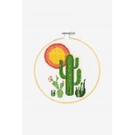 Kit cactus  x 3