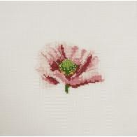 Mini kit point de croix fleur Pavot